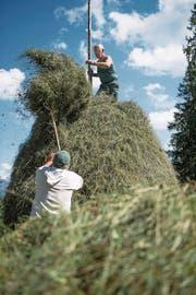 Wisi Epp befördertr das Heu mit einer Heugabel nach oben zu Bärti Enz. (Bild:Corinne Glanzmann (Giswil, 22. August 2017))