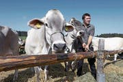 Der von den Aargauer Braunviehzüchtern organisierte Anlass lockt auch Jungbauern an. (Bild: Werner Schelbert (Horben, 23. September 2017))