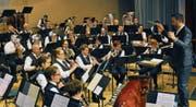 Der Musikverein Seedorf unter der Leitung von Michel Truniger bei seinem Auftritt. (Bild: PD)