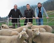 Von links: Wendelin Loretz, Christian Arnold und Res Gnos setzen sich für den Schutz von Schafen ein. (Bild: Urs Hanhart (Isenthal, 6. April 2017))