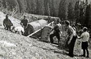 Die erste Aussetzung von Steinböcken am Huotstock im Mai 1955. (Bild: Reproduktion Staatsarchiv Obwalden)