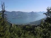 Wanderer erwarten auch nächste Woche sonnige Ausssichten. Hier vom Bleikigrad zur Musenalp über die Rätzelen - immer wieder einen Ausblick wert. (Bild: Leserbild Martina Odermatt)