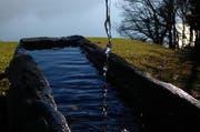Quellwasser mündet in einen Brunnen. (Symbolbild) (Bild: Leserbild)