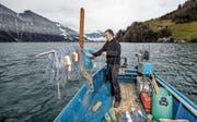 Fischer Michael Näpflin bei Vorbereitungen für den Auswurf der Netze auf dem Vierwaldstättersee bei Seelisberg. (Bild: Philipp Schmidli (20.01.2018))
