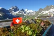 Jetzt kann man die schöne Bergwelt geniessen. Bei der Sustlihütte ist die Einstimmung zum 1. August schon gemacht. (Bild: Vroni Wey)