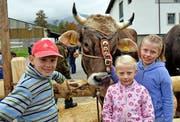 Siegerstier Carlo mit Patrick, Melanie und Tamara, den Kindern des Züchters Paul Rohrer. Bilder: Romano Cuonz