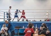 Im Ring geht es auch bei der Jugend ans Eingemachte. (Bilder: Pius Amrein (Luzern, 4. März 2018))