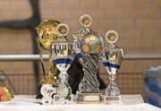 Für die Teilnehmerinnen lockten Pokale. (Bild: Roger Grütter (Wolhusen, 21. Januar 2018))
