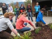 Oberstufenschüler probieren den Beruf des Landschaftsgärtners aus. (Bild: PD)