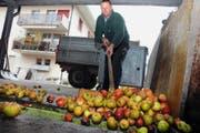 Norbert Fischer spediert seine Äpfel in die Mostpresse. Bild: Oliver Mattmann (Stans, 13. Oktober 2016)
