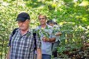 Denkmalpfleger Peter Omachen liest vor grandioser Kulisse aus einem Hotelprospekt vor (links), rechts Teilnehmer der Führung im verwilderten Burgfluh-Park. (Bilder Christoph Riebli)