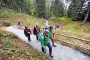 Die Aussichtsplattform ist auf einem breiten Wanderweg erreichbar. (Bild Urs Hanhart)