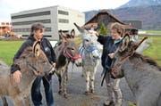 Tierhalterin Iris Schleiss (links) und Helferin Erika Michel machen sich mit vier Eseln ab dem Heimwesen Brand (im Hintergrund) auf zu einem Spaziergang. (Bild Robert Hess)