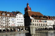 Stolz posiert die Möwe vor dem Luzerner Rathaus, dies bei prächtigem Dezemberwetter (Bild: Leserbild Peter Schnellmann, Luzern)
