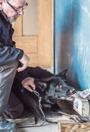 Franz-Xaver Häfliger mit seinem Notengeldspürhund Bella. (Bild: Nadia Schärli (Sempach, 10. Januar 2018))