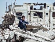 Noch kann Muhammad Assaf nur vom grossen Erfolg träumen. Doch dann geschieht eine Art Wunder. (Bild: Praesens Film, PD)