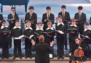 Solisten der Münchner Philharmoniker sowie die Luzerner Sängerknaben treten auf. (Bilder: Peter Fischli/PD)