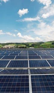 Fotovoltaikanlagen wie hier auf der V-Zug sind immer noch selten. (Bild: Stefan Kaiser (3. Juli 2013))