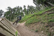 Die Downhillstrecke auf dem Haldi. (Bild: Valentin Luthiger)