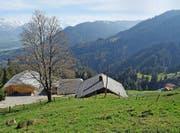 Im Gebiet Lütholdsmatt wären eine zentrale Milchverarbeitung (Käserei) sowie eine Verkaufsstelle vorgesehen. Bild: Robert Hess