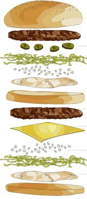 Was ist drin? Wir haben die einzelnen Zutaten des Big Macs einmal genau analysiert (Bild: Illustration: Elena Freydl)
