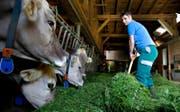 Hat die Büroklamotten mit der Stallkluft getauscht: Lucia Omlin beim Füttern ihrer Tiere. (Bild Corinne Glanzmann)