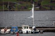 Zerrissenes Segel am Hafen in Arth. (Bild: Geri Holdener, Bote der Urschweiz)