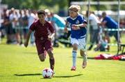 Beim Pfingst-Masters treten nationale und internationale Top-Teams gegeneinander an, wie hier die U13-Mannschaften des FC Luzern (mit Luuk Breedijk) gegen Servette Genf. (Bild: Roger Grütter (Luzern, 3. Juni 2017))