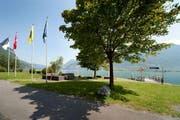 Die Gemeinde Seedorf. (Bild: PD/seedorf-uri.ch)