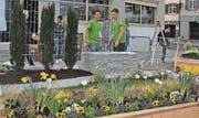 Das Team mit dem Rheintaler Jano Paar von Steger Gartenbau (rechts) hat es nicht unter die besten Drei geschafft. Alle Arbeiten aber wurden von den Experten als hervorragend bezeichnet.
