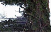 Rollen und Zugseil des Skilifts wurden beschädigt. (Bild: PD)