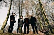«Verschnaufpause vom Indie-Rock»: Asool mit Sänger und Gitarrist Roger Gahler (ganz links) bieten sich als Alternative an. (Bild: pd)