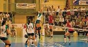 Bis zum Volleyball-Start dauert es noch drei Wochen. (Bild: Archiv/tt)