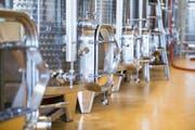 Der Ertrag liegt bei Bio-Reben um etwa zehn Prozent tiefer, dafür sind die Weine danach charaktervoller. (Bild: Mareycke Frehner)