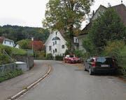 Viel Grün, alte Villen am Anfang (Bild) und neuere Einfamilienhäuser prägen die Hardungstrasse auf der Notkersegg. (Bild: Elina Grünert)