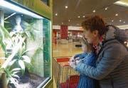 Marion Baumgartner und Tochter Anna sehen sich fasziniert die vielen exotischen Tiere an. (Bild: Benjamin Schmid)