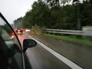 Auf der A1 vor Rheineck ist ein Baum auf ein Auto gestürzt. (Bild: Arcangelo Balsamo)