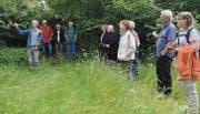 Vögel, Insekten, Fledermäuse, Igel usw. finden zwischen der Oberstufe und dem Friedhof Lebensräume, wie Lehrer Markus Eugster (l.) aufzeigte. (Bild: Kathrin Meier-Gross)