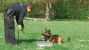 Peter Vetsch stellt eine Prüfungssituation nach. Hund Zen musste jenen Gegenstand anzeigen, in dem Drogen versteckt waren. (Bild: PD)