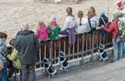 Über 90 Prozent der Besucherinnen und Besucher waren mit Angebot und Stimmung an der Olma zufrieden. (Bild: Hanspeter Schiess)