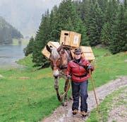 Giulia Kurer und Maultier Tintin auf der Route beim Seealpsee.