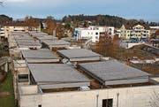 Die Solaranlage wird auf den 12 Blechdächern des Heims installiert. (Bild: Andrina Zumbühl)
