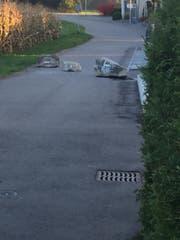 Am vergangenen Freitag hat die Gemeinde die Steine vor der Brücke platziert. (Bild: PD)