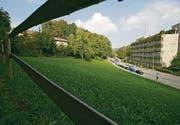 Grünes Licht für Umzonung: Die Wiese gegenüber der Gewerbeschule kann gemäss Stadtrat für ein Alterswohnheim umgezont werden. (Archivbild: Urs Bucher)