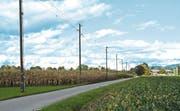 Die Freileitung, die auch in Richtung Rohners Hofladen führt, ist ausser Betrieb. Bis Ende Jahr sollen die Masten und Drähte verschwinden. (Bild: Kurt Latzer)