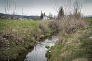 Zwei bis vier Stunden dauert es, bis Schmutzwasser aus dem Andwiler Dorfbach ins Grundwasser sickert. (Bild: Ralph Ribi)