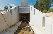 Beim Rütiweiher wird ein Rückhaltebecken als Hochwasserschutz gebaut. (Bild: Peter Käser)