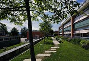 Guten Bauen Ostschweiz, Schulanlage Feldli St. Gallen (Bild: Hanspeter Schiess)
