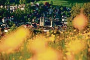 Altstadt durch die Blume: Das Kalenderbild im Mai. (Bild: Sandro Reichmuth)