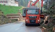 Die Rheintaler Wald-Holz-Energie AG setzt in Eichberg den Holzhäcksler ein, der im Mai 2016 in Betrieb genommen wurde. Die Holzschnitzel liefert die Firma für Schnitzelheizungen in Altstätten und Diepoldsau. Den Holzschlag, den Transport und das Holz übernimmt die Forstteam Haslen GmbH aus Appenzell Innerrhoden. (Bild: Kurt Latzer)